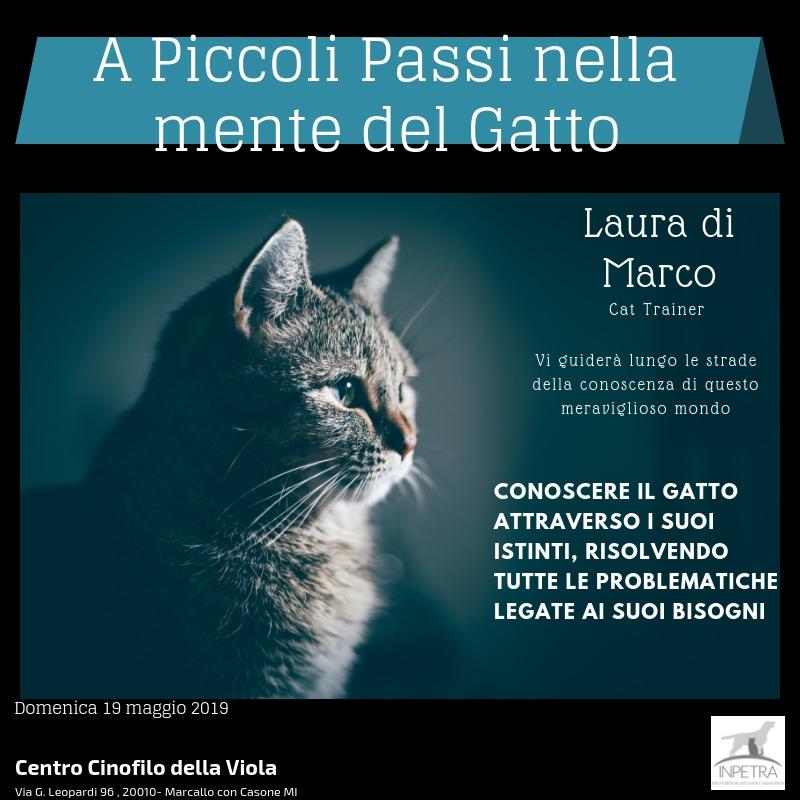 A Piccoli Passi nella mente del Gatto1