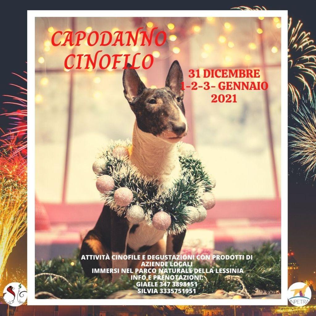 Capodanno Cinofilo 2020 « Inpetra Italia